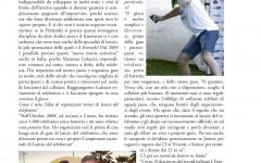 sportmagazine